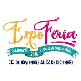 Expo Feria Sahuayo 2018
