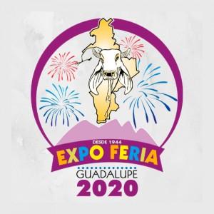 Expo Feria Guadalupe 2020
