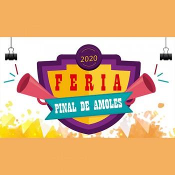 Feria Pinal de Amoles 2020
