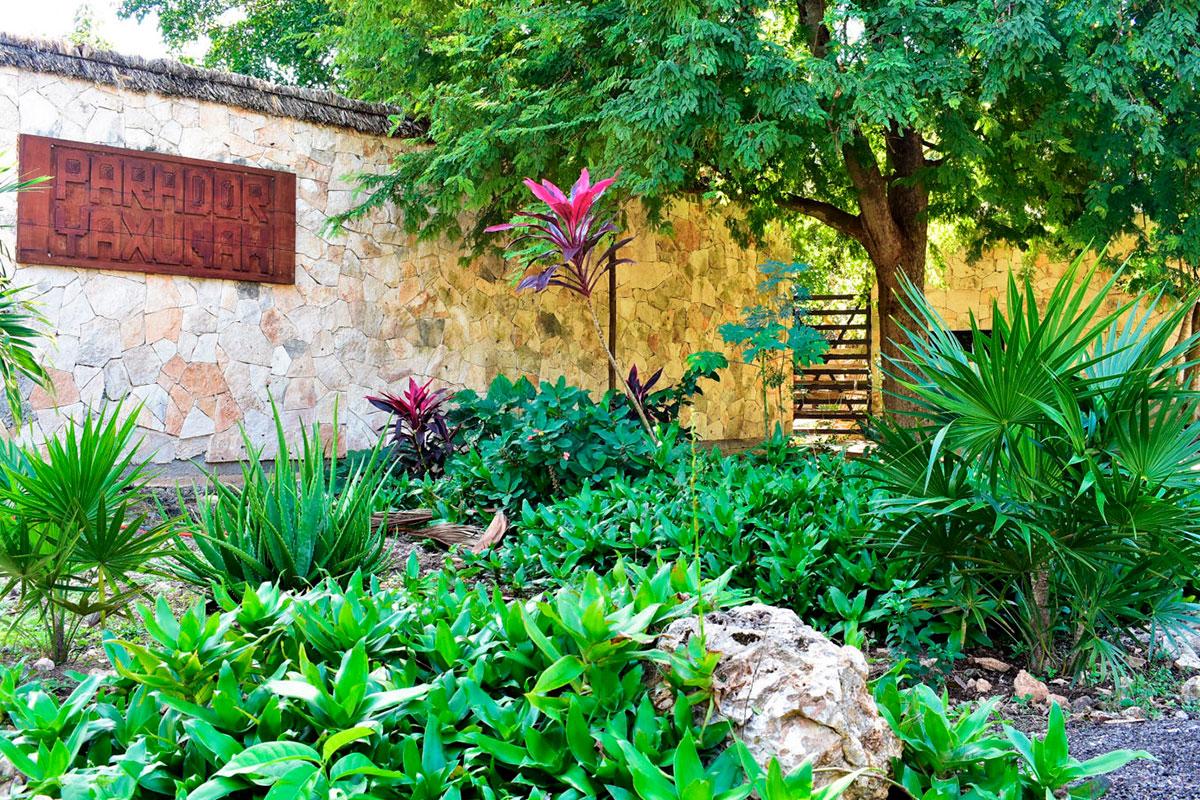 Yaxunah, un viaje ancestral por la Cultura Maya en Yucatán