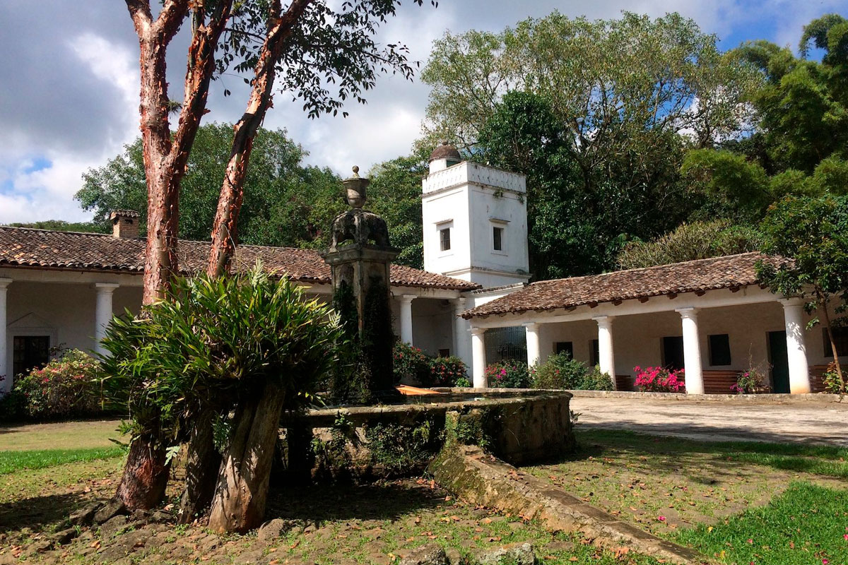 Ruta de café y aventura en el bello Veracruz